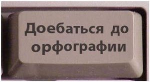 9108305.jpg
